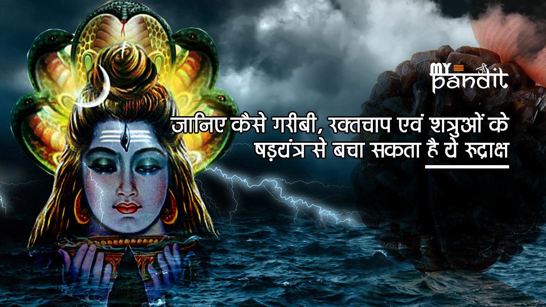 Ek Mukhi Rudraksh